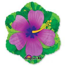 Гибискус фиолетовый